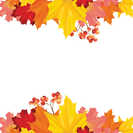 Colorful Card or Banner with Autumn Leaves in Vector with place for Text
