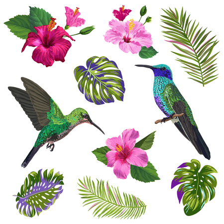 Watercolor Hummingbird, Hibiskus Flowers and Tropical Palm Leaves. Hand Drawn Exotic Colibri Birds and Floral Elements for Patterns, Decoration, Greeting Cards. Vector illustration 일러스트