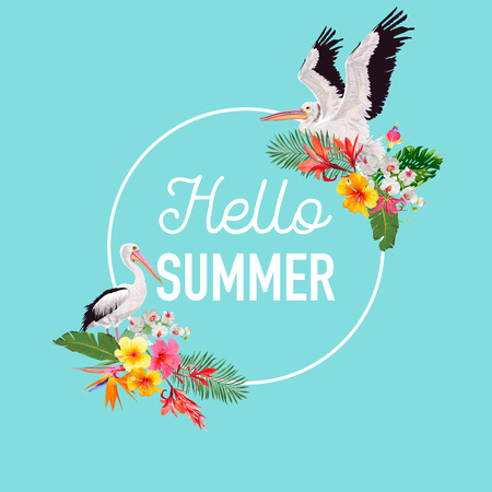 Hello Summer Design with Tropical Plants and Birds. Summertime Card with Exotic Flowers and Pelicans. Floral Background, Poster, Graphic. Vector illustration