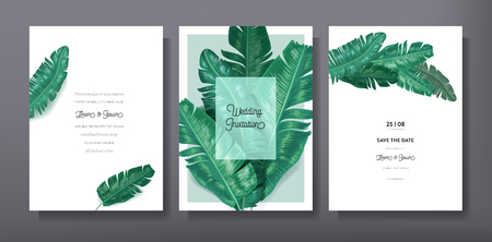 Tropical trendy greeting or invitation card template design, set of poster, flyer, brochure, cover, party advertisement, dark green palm leaves in vector 일러스트