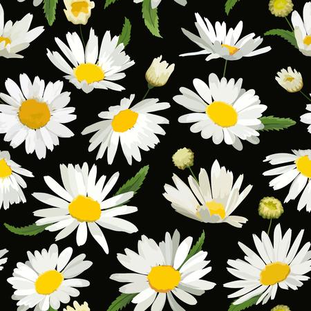 Nahtloses mit Blumenmuster mit Kamille-Blumen. Natürlicher Hintergrund mit Gänseblümchen für Frühlings-Sommer-Design-Tapete, Dekoration, Druck Vektor-Illustration