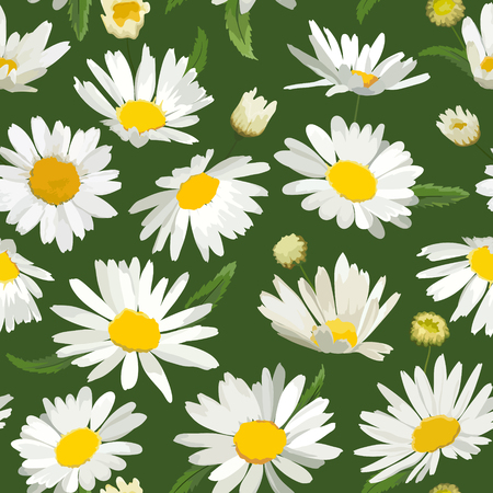 Floral Seamless Pattern with Chamomile Flowers. Natural Background with Daisy Flowers for Spring Summer Design Wallpaper, Decoration, Print. Vector illustration Vector Illustratie
