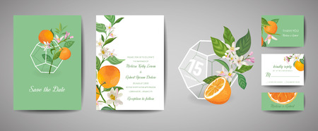 Set of Botanical retro wedding invitation card, vintage Save the Date, template design of orange fruits and leaves, citrus blossom illustration. Vector trendy cover, pastel graphic poster, brochure Illustration
