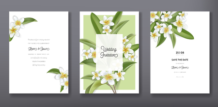 Minimalist floral tropical trendy greeting or wedding invitation card template design, set of poster, flyer, brochure, cover, party advertisement, tropic plumeria flowers in vector