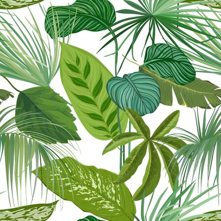 Green Tropical Leaves, Rainforest Decorative Wallpaper Ornament, Seamless Pattern or Botanical Background. Realistic Spathiphyllum Cannifolium Branches, Paper or Textile Print. Vector Illustration