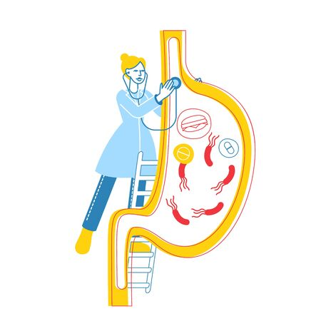 Gastroenterology Concept. Female Doctor Character Stand on Ladder with Stethoscope at Huge Stomach