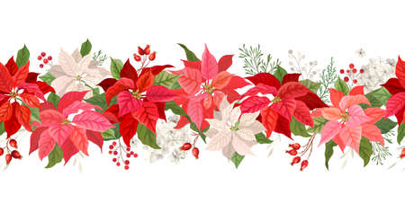 Christmas Poinsettia vector garland border, Watercolor floral winter season frame, holiday seamless background, with rowan berries, pine branch, star flowers, xmas decoration banner Ilustración de vector