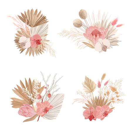 Luxury dried bouquets, dry protea flowers, tropical palm leaves, pale orchid, eucalyptus, floral elements.Trendy winter, autumn wedding concept vintage decoration. Vector isolated illustration set