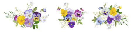 Watercolor pansy flowers bouquet collection. Vector viola spring floral set illustration. Summer bloom