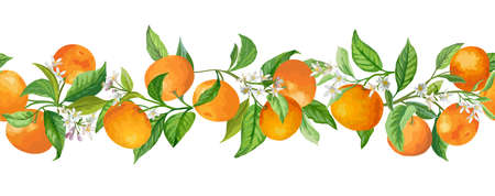 Mandarin Garland Branches Vector Illustration. Vintage Fruits, Flowers and Leaves Greenery