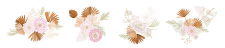 Set of watercolor dry flowers vector set. Pampas grass, dried palm leaves, dahlia, lunaria flower illustration
