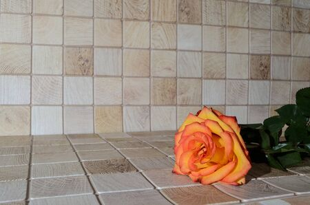 orange-yellow rose lies on a surface with a wooden texture. soft focus. copy space Reklamní fotografie