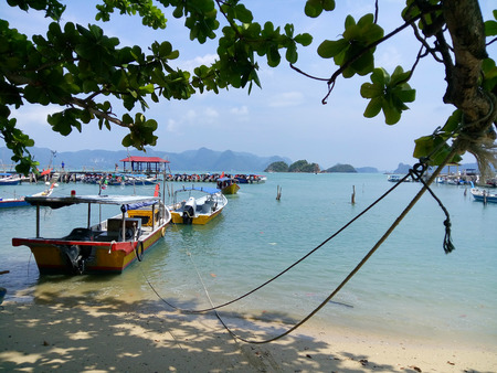 The breeze is blowing but the boats are tightly tied to a tree. Langkawi. Malaysia.
