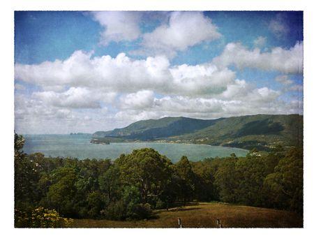 tasmanian: Tasmanian panorama