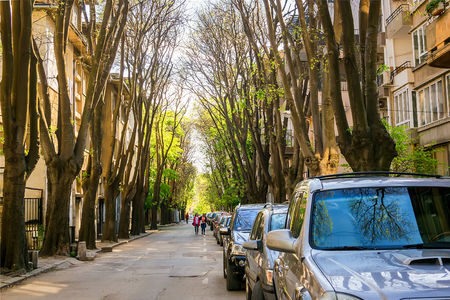 Narrow city street with a lot of cars parked on the roadside under the canopy of old trees on a sunny spring day. Dimension perspective, horizontal frame. Standard-Bild
