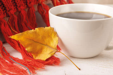 Close-up of dry yellow autumn leaf on a knitted red fringed scarf near white mug of hot steaming coffee. Cozy fall mood concept. Selective focus. Front view. 免版税图像