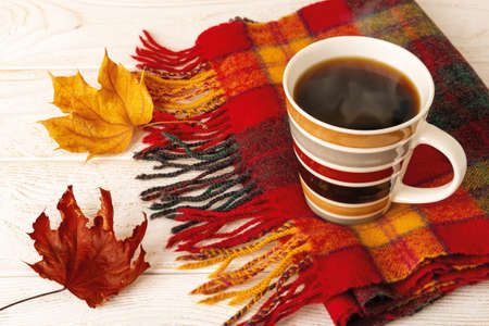 Striped mug of hot steaming coffee on a fringed wool check scarf and two autumn leaves over white wood rustic surface. Cozy fall mood concept. Top view.