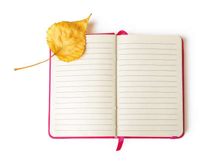 Yellow fall leaf on the upper left corner of an open notebook with lined paper isolated on a white background. Diary empty pages for copy space. Top view. 免版税图像 - 158997418