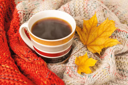 Striped mug of hot steaming coffee wrapped in a red beige knitted scarf and two dry yellow autumn leaves. Cozy fall mood concept. Top view.