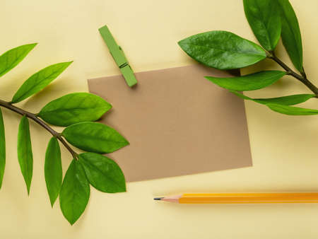 Blank brown paper card, simple pencil and fresh green leaves of eternity Zuzu plant or Zamioculcas zamiifolia on a pastel yellow background. Living green eco-friendly lifestyle. Copy space. Top view.