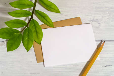 Blank white paper card, simple pencil and fresh green leaves of eternity Zuzu plant or Zamioculcas zamiifolia on a white wood table. Living green lifestyle and eco-friendly concepts. Copy space. Top view.