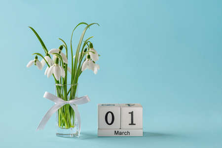 White snowdrops in a glass vase with bow and perpetual calendar with date 01 march against blue background. Small bouquet of the first spring flowers Galanthus Nivalis. Copy space. Front view. 免版税图像