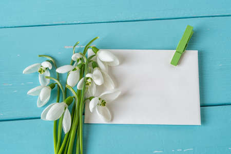 Small bouquet of Galanthus Nivalis snowdrops flowers on paper blank with green clothespin against blue wood desk. Vintage spring season holidays greeting card mock-up. Copy space. Top view.