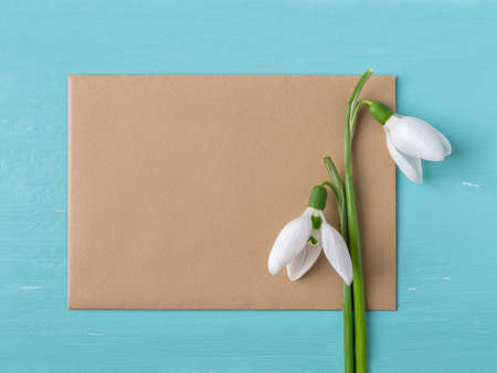 Brown paper blank and two snowdrops or Galanthus Nivalis flowers against blue wood desk. Vintage spring season holidays greeting card mock-up. Copy space. Top view. 免版税图像