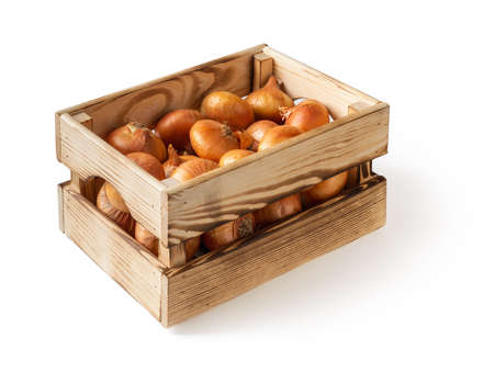 Side view of wooden crate with raw yellow onions isolated on white background. Fresh onion in a wood box. Eco-friendly rustic style containers for vegetables and fruits. Vegetables, vegetarian and healthy eating. Domestic life.