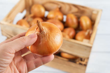 Woman hand takes one raw yellow onion from wooden crate. Fresh onion in a wood box. Eco-friendly rustic style containers for vegetables and fruits. Vegetables, vegetarian and healthy eating. Domestic life. Close-up.
