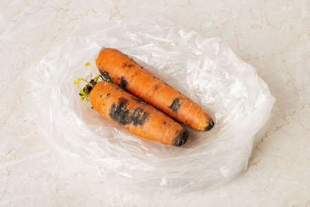 Black mold stains on two raw carrots in a plastic bag on a kitchen table. Fungal mold on rotten carrots. Spoiled fruits and vegetables. Food forgotten in the fridge. Biodegradable food waste. Close-up.