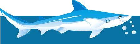 miserly: Shark, Illustration
