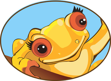 creeping: Agua rana rastrero en tierra