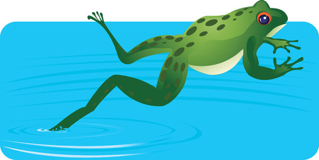 disgust: Frog Jumping out of water  Illustration