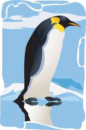 geographical locations: A Beautiful Penguin walking on ice  Illustration