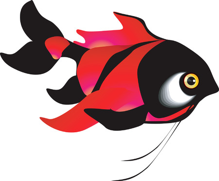 Beautiful red fish swimming in the water