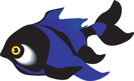 bluefish: Beautiful  blue fish swimming in the water Illustration