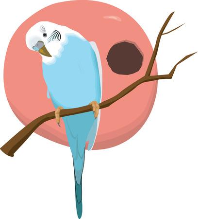 Love bird sitting on tree's branch  Illustration