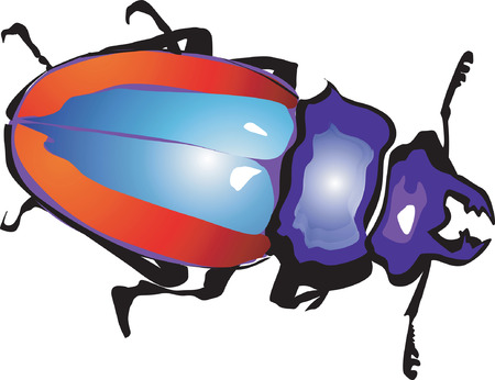hopper: colourful Stag-Beetle isolated
