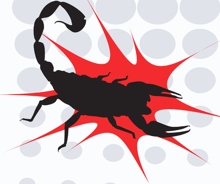 poisonous organism: Black Scorpion on red surface Illustration