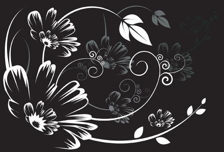Silhouette de motifs floraux sur fond noir