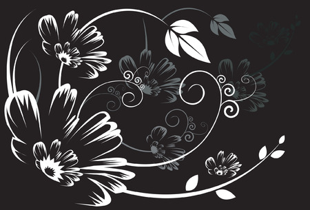 intricacy: Silhouette of Floral designs on black background