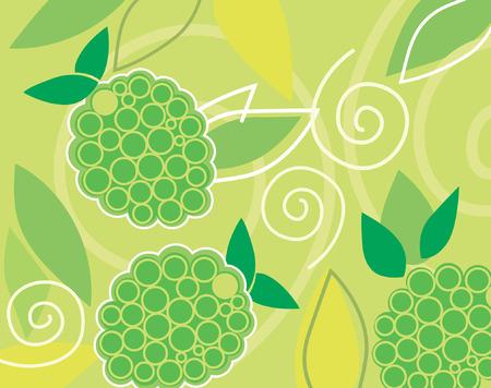 cabernet: Design of three grapes