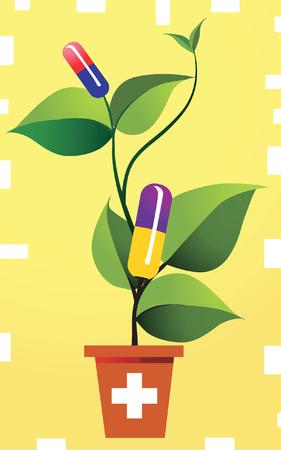plante � base de plantes, Illustration