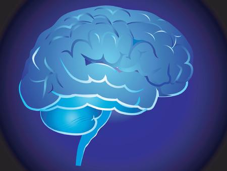 medicina interna: Foto de un cerebro en el fondo azul
