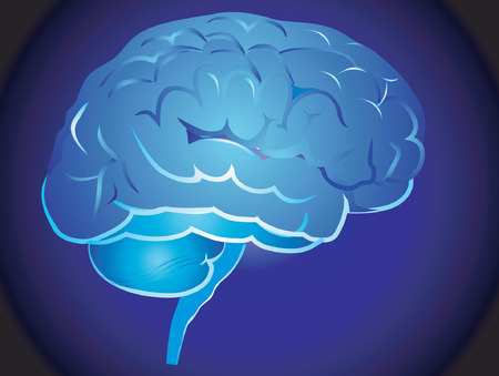 Picture of a brain in blue background Vector