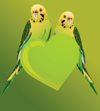 amazon rainforest: Two love birds on a heart shape of green colour and green background
