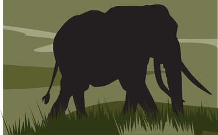 animal leg: elefante caminando sobre el paisaje