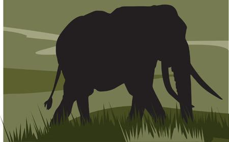 animal teeth: elephant walking on landscape Illustration