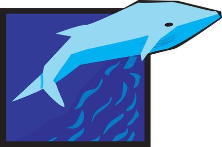 berth: Shark swimming in a sea
